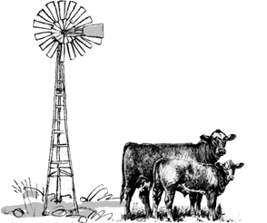 cattle-and-windmill2