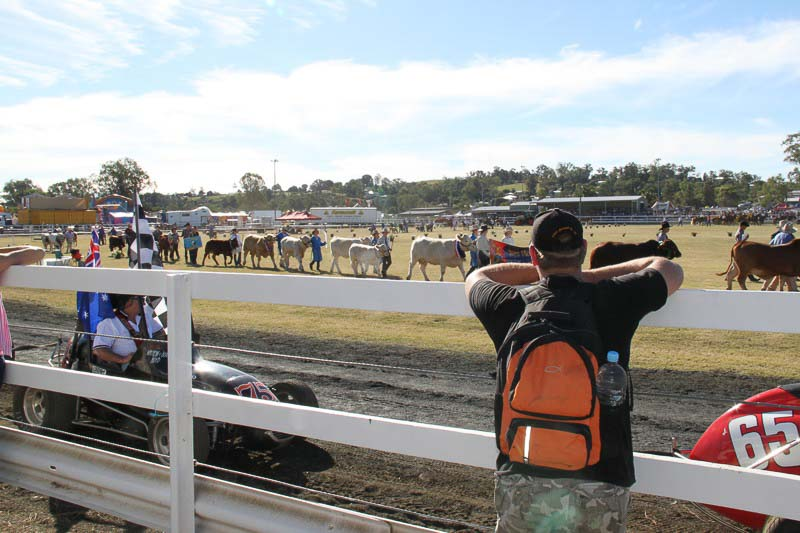 10-Boonah-Show-2010-6