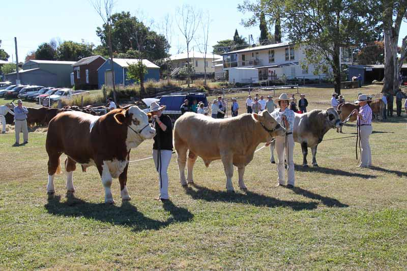 10-Boonah-Show-2010