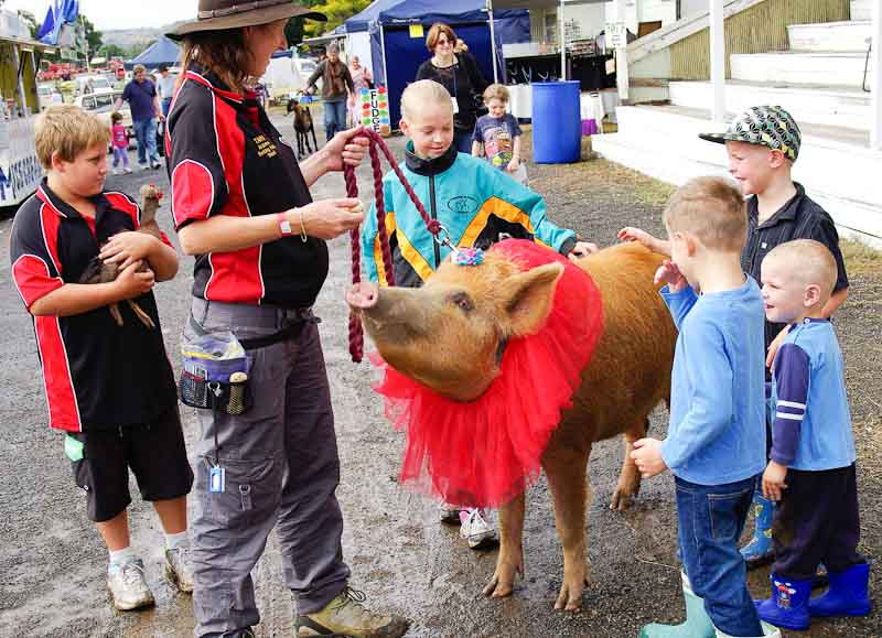 11-Boonah-Show-2011-33