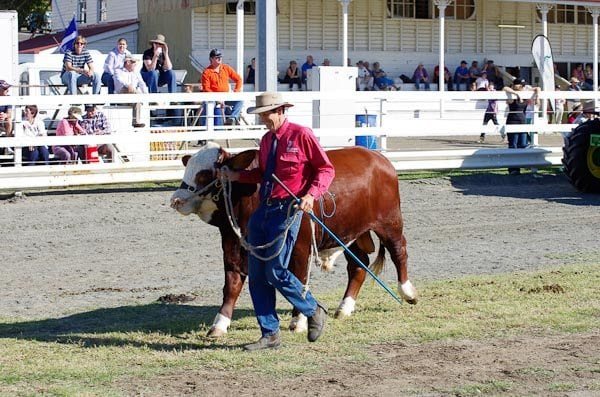 12-Boonah-Show-2012-27