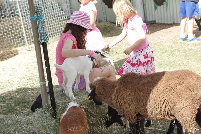 14-Boonah-Show-2014-86